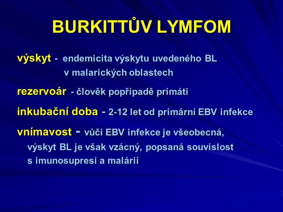 BURKITTŮV LYMFOM výskyt - endemicita výskytu uvedeného BL