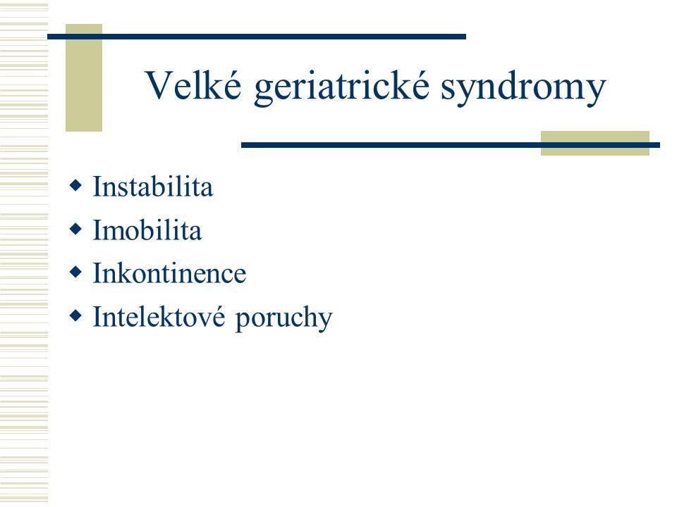 Velké geriatrické syndromy