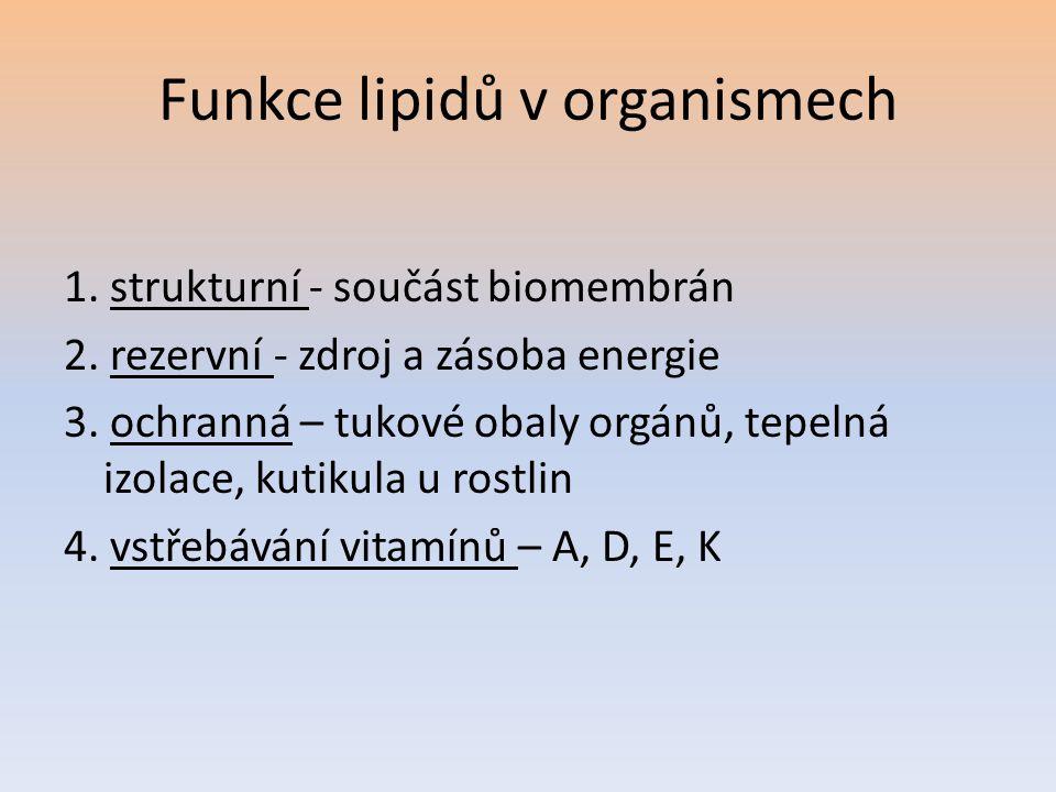 Funkce lipidů v organismech