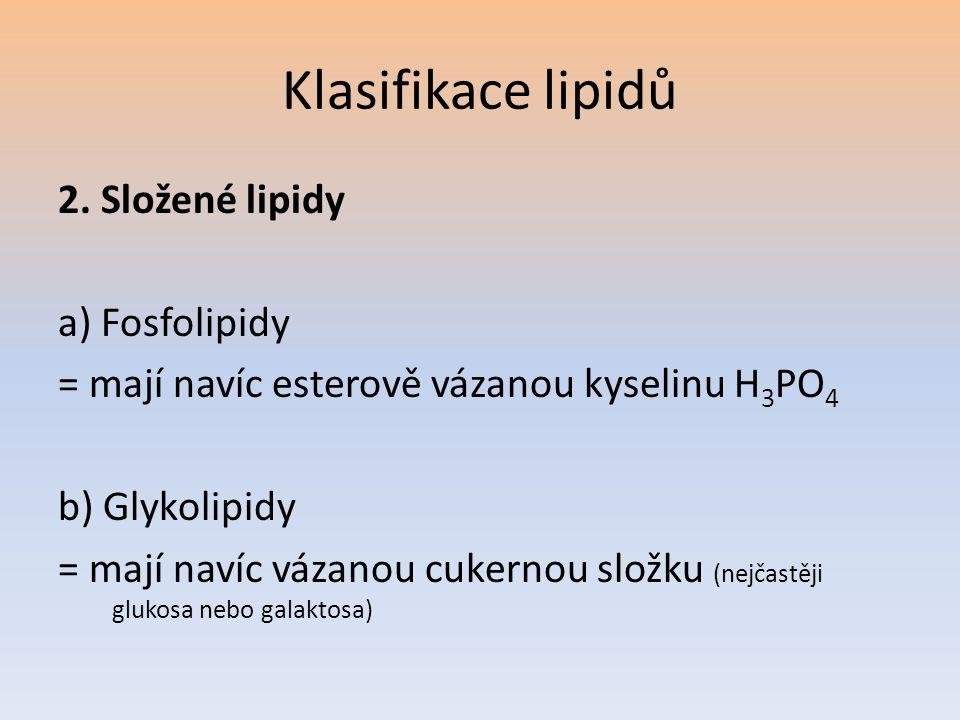 Klasifikace lipidů 2. Složené lipidy a) Fosfolipidy
