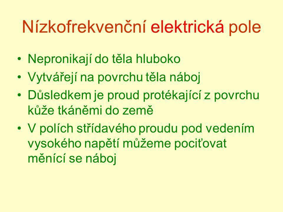 Nízkofrekvenční elektrická pole