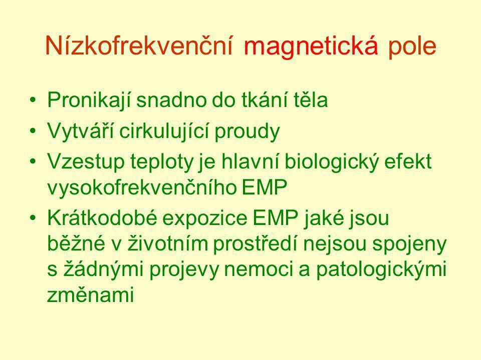 Nízkofrekvenční magnetická pole