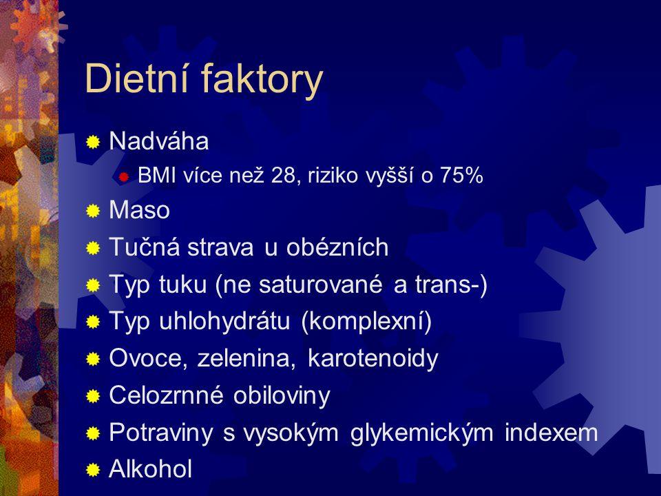 Dietní faktory Nadváha Maso Tučná strava u obézních