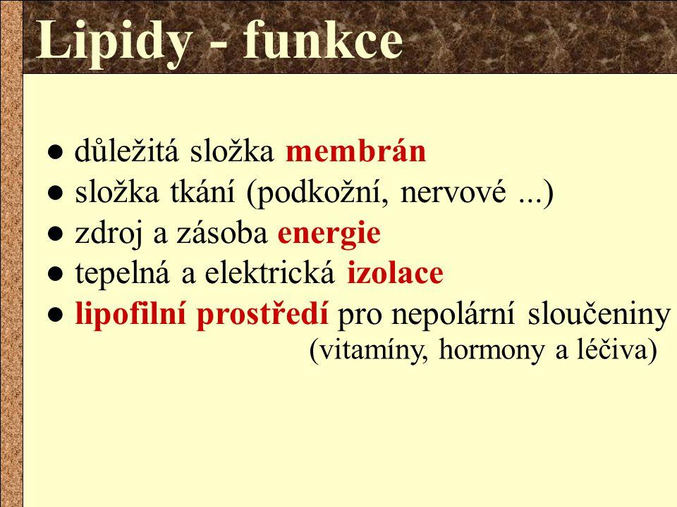 Lipidy - funkce ● důležitá složka membrán ● složka tkání (podkožní, nervové ...) ● zdroj a zásoba energie.