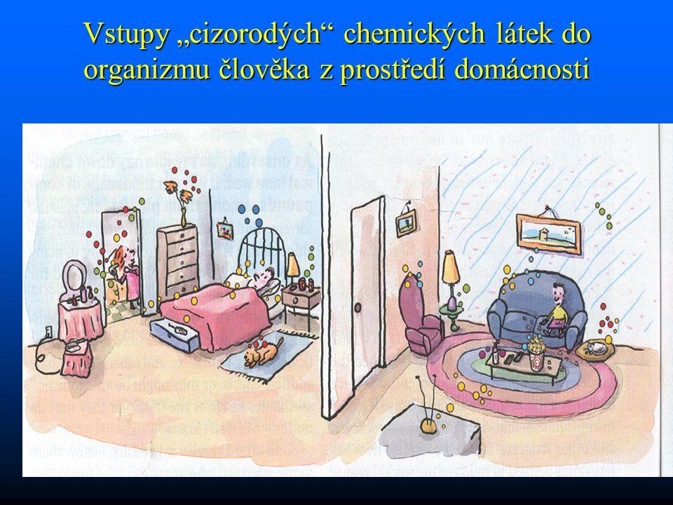 """Vstupy """"cizorodých chemických látek do organizmu člověka z prostředí domácnosti"""