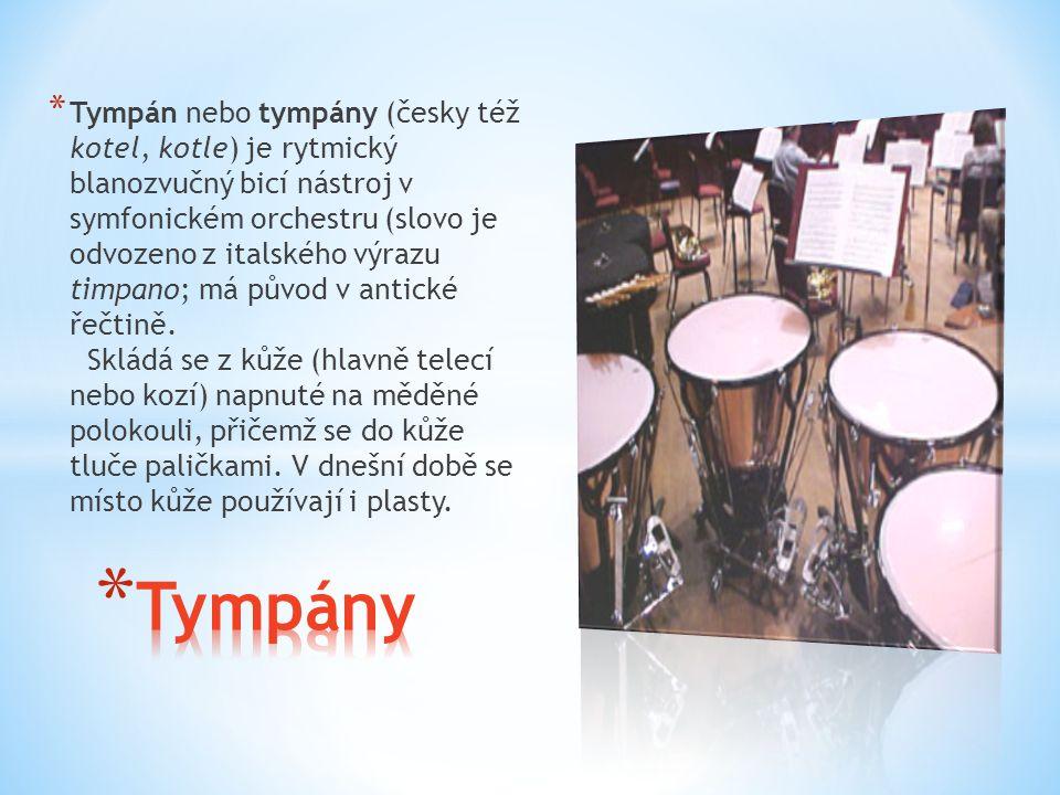 Tympán nebo tympány (česky též kotel, kotle) je rytmický blanozvučný bicí nástroj v symfonickém orchestru (slovo je odvozeno z italského výrazu timpano; má původ v antické řečtině. Skládá se z kůže (hlavně telecí nebo kozí) napnuté na měděné polokouli, přičemž se do kůže tluče paličkami. V dnešní době se místo kůže používají i plasty.