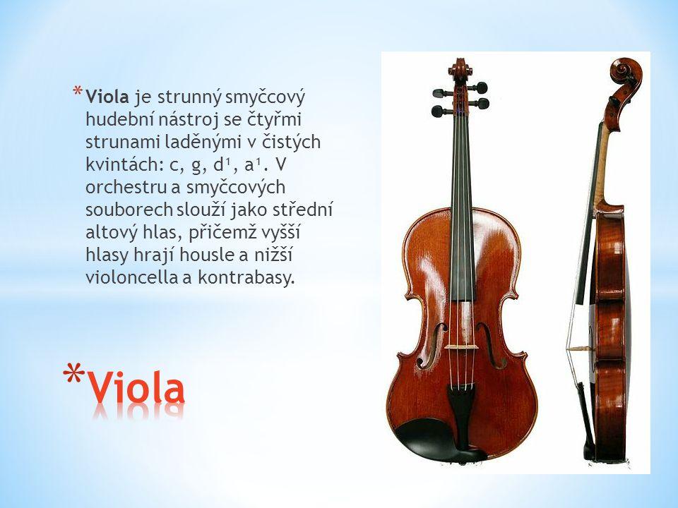 Viola je strunný smyčcový hudební nástroj se čtyřmi strunami laděnými v čistých kvintách: c, g, d¹, a¹. V orchestru a smyčcových souborech slouží jako střední altový hlas, přičemž vyšší hlasy hrají housle a nižší violoncella a kontrabasy.