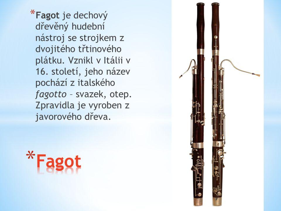 Fagot je dechový dřevěný hudební nástroj se strojkem z dvojitého třtinového plátku. Vznikl v Itálii v 16. století, jeho název pochází z italského fagotto – svazek, otep. Zpravidla je vyroben z javorového dřeva.