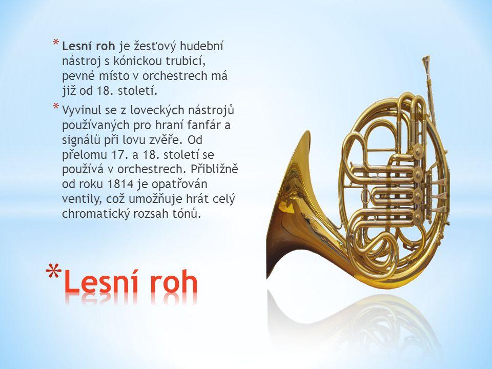 Lesní roh je žesťový hudební nástroj s kónickou trubicí, pevné místo v orchestrech má již od 18. století.