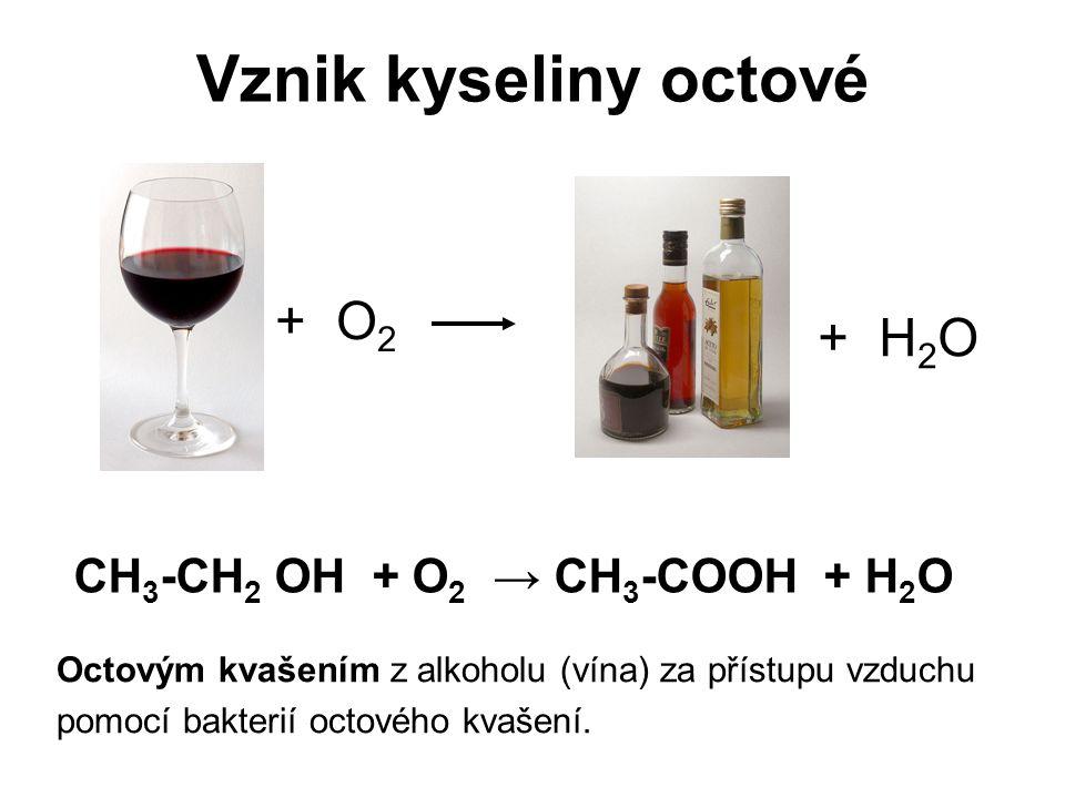 Vznik kyseliny octové + O2 + H2O CH3-CH2 OH + O2 → CH3-COOH + H2O
