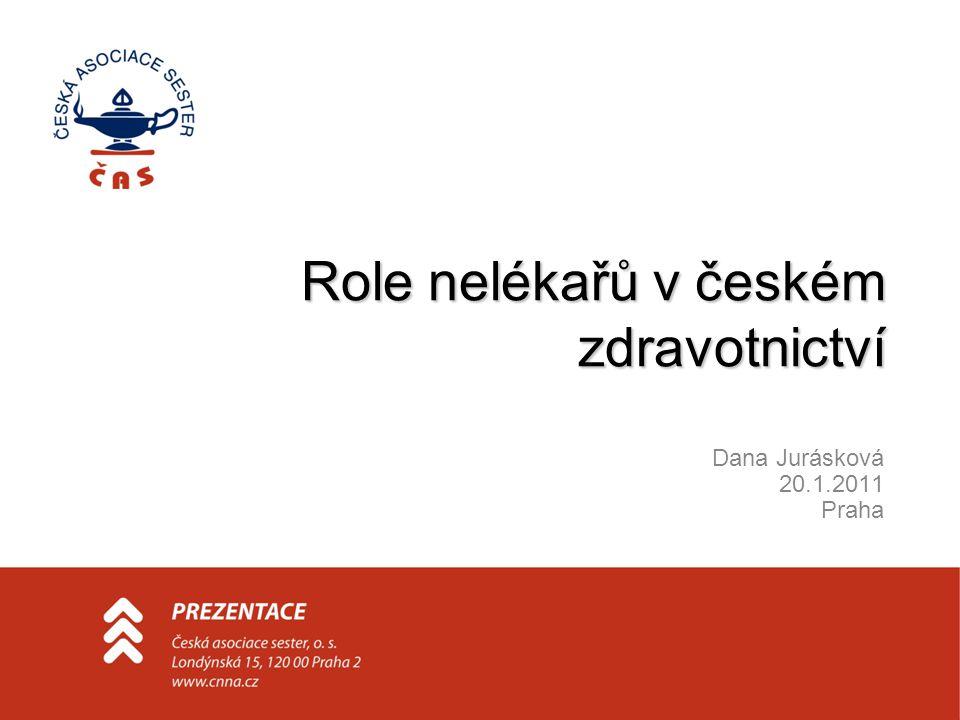 Role nelékařů v českém zdravotnictví