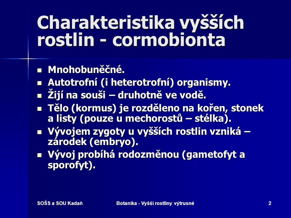 Charakteristika vyšších rostlin - cormobionta