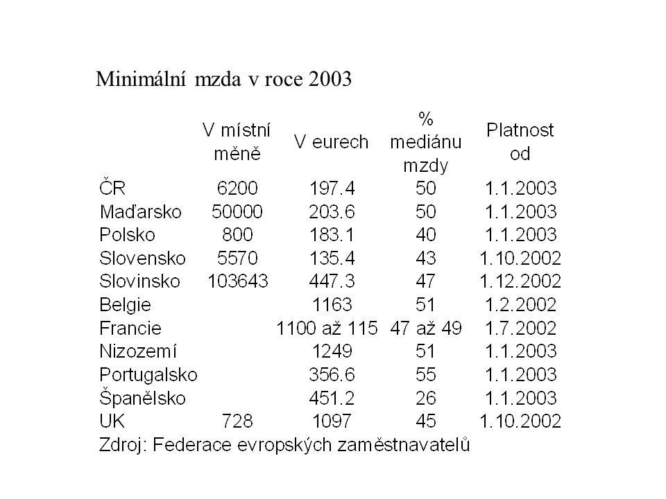 Minimální mzda v roce 2003