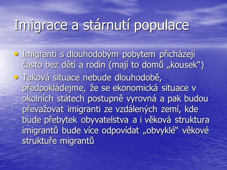 Imigrace a stárnutí populace