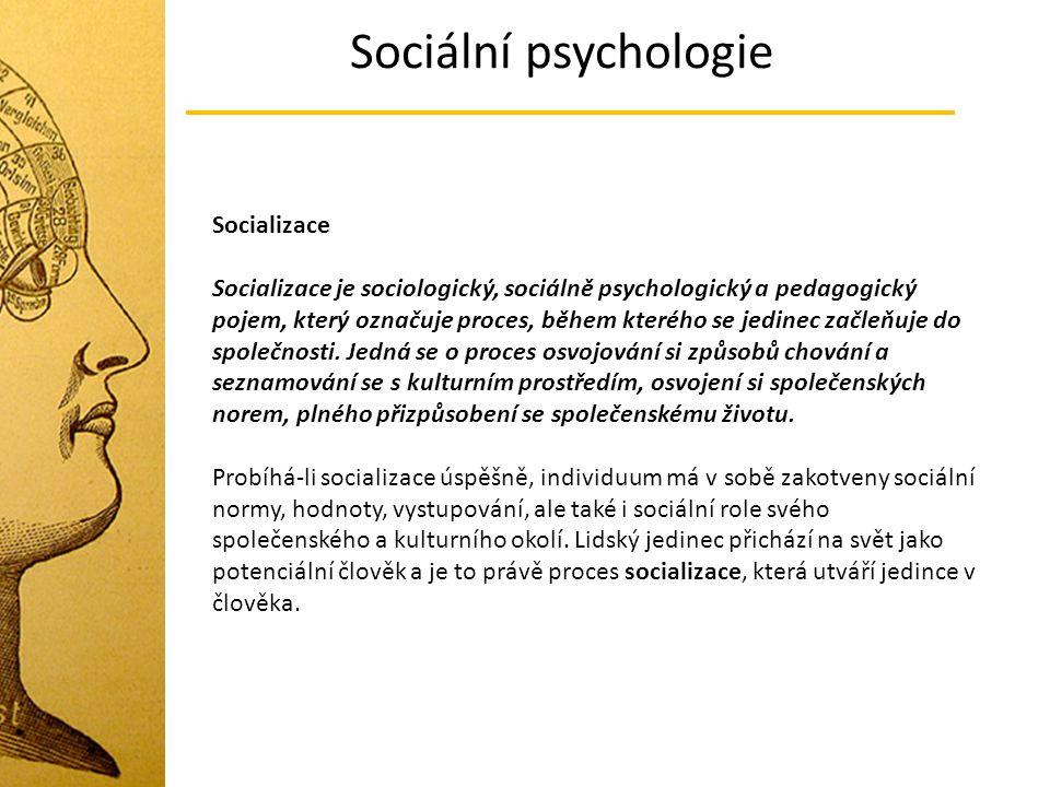 Sociální psychologie Socializace
