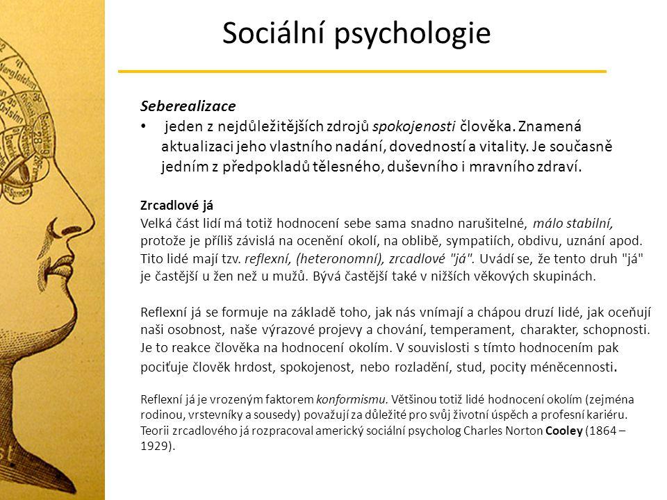 Sociální psychologie Seberealizace