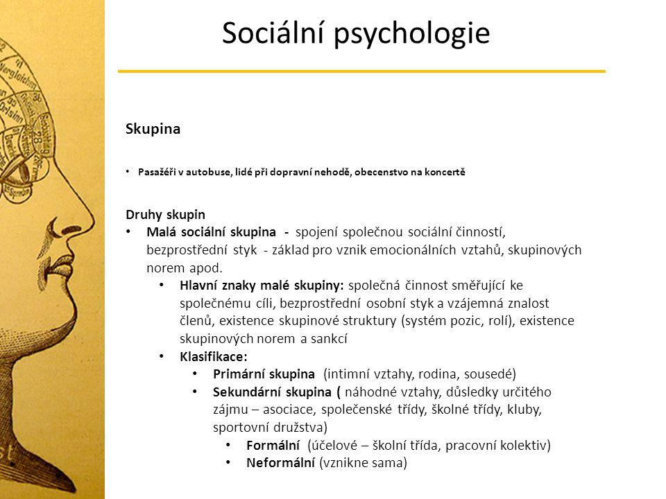 Sociální psychologie Skupina Druhy skupin