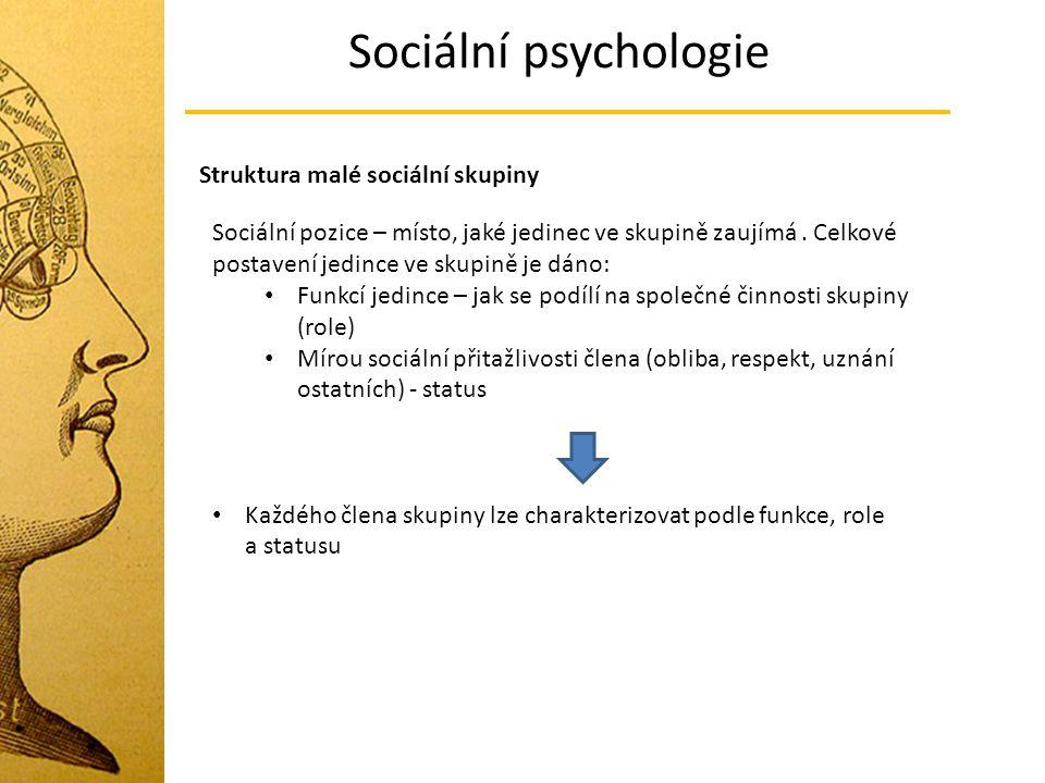 Sociální psychologie Struktura malé sociální skupiny