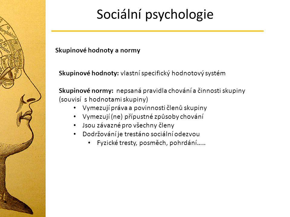 Sociální psychologie Skupinové hodnoty a normy