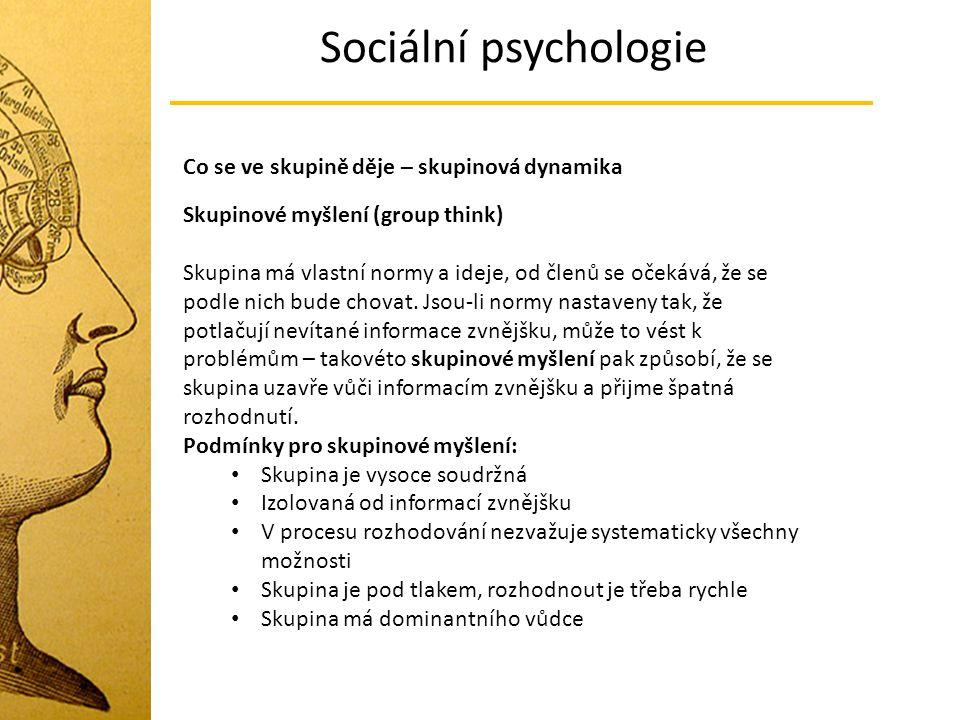 Sociální psychologie Co se ve skupině děje – skupinová dynamika