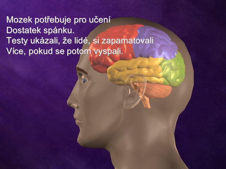 Mozek potřebuje pro učení