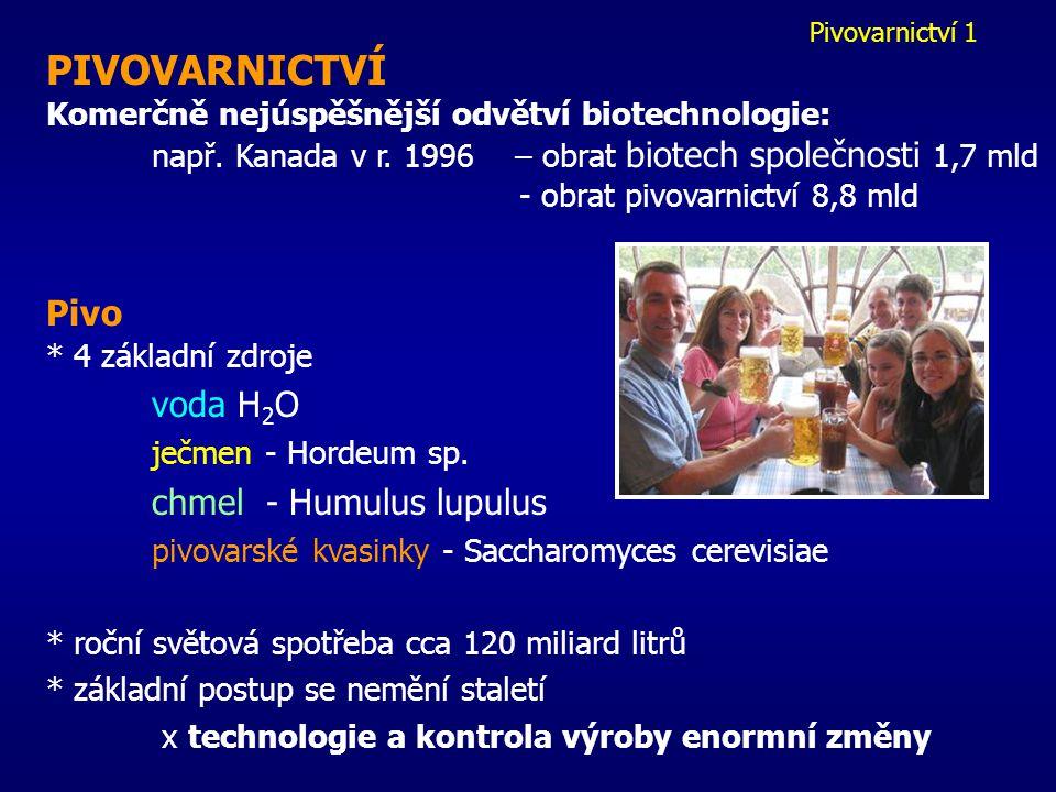 PIVOVARNICTVÍ Pivo Komerčně nejúspěšnější odvětví biotechnologie: