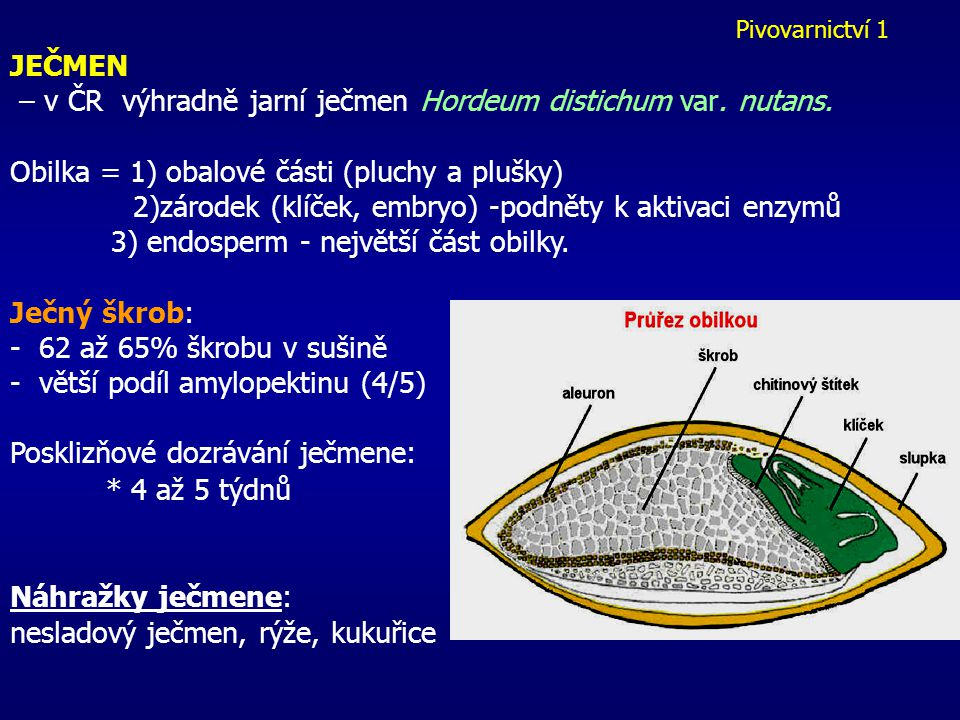 – v ČR výhradně jarní ječmen Hordeum distichum var. nutans.