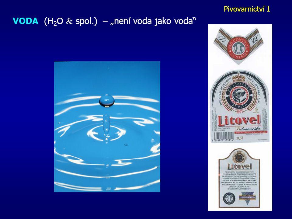 """VODA (H2O  spol.) – """"není voda jako voda"""