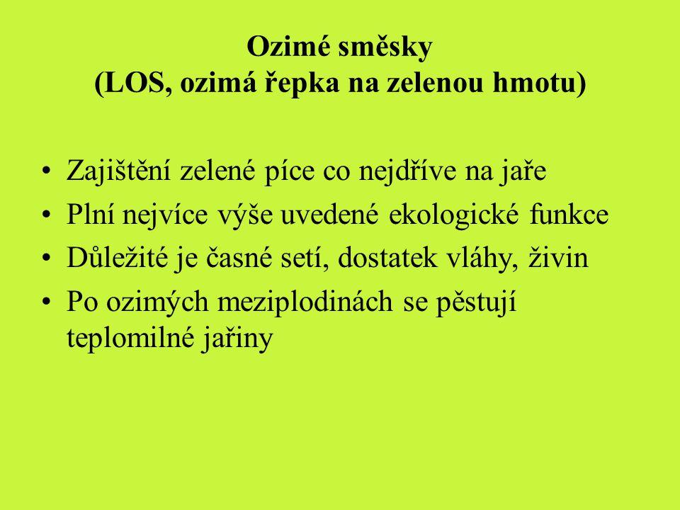Ozimé směsky (LOS, ozimá řepka na zelenou hmotu)