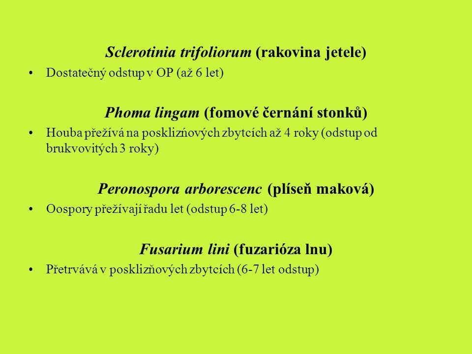 Sclerotinia trifoliorum (rakovina jetele)