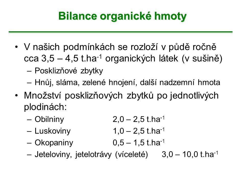 Bilance organické hmoty