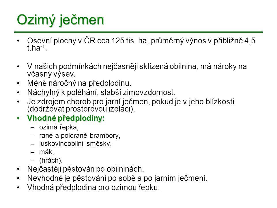 Ozimý ječmen Osevní plochy v ČR cca 125 tis. ha, průměrný výnos v přibližně 4,5 t.ha-1.