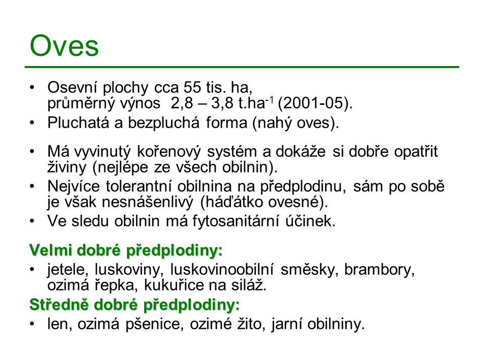Oves Osevní plochy cca 55 tis. ha, průměrný výnos 2,8 – 3,8 t.ha-1 (2001-05). Pluchatá a bezpluchá forma (nahý oves).