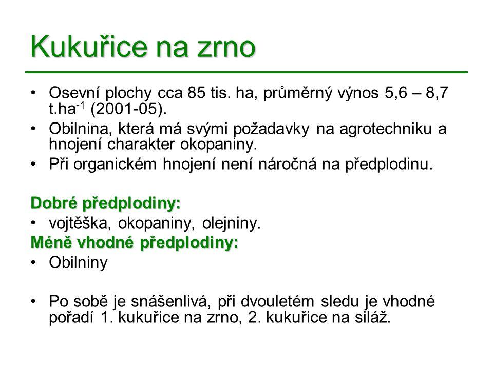 Kukuřice na zrno Osevní plochy cca 85 tis. ha, průměrný výnos 5,6 – 8,7 t.ha-1 (2001-05).