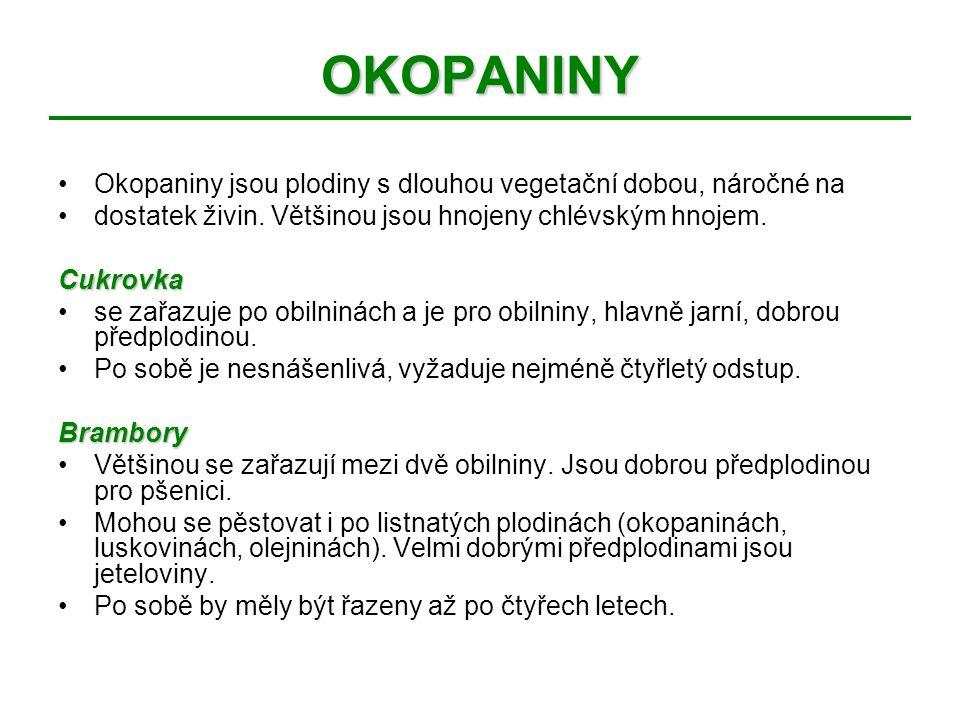 OKOPANINY Okopaniny jsou plodiny s dlouhou vegetační dobou, náročné na