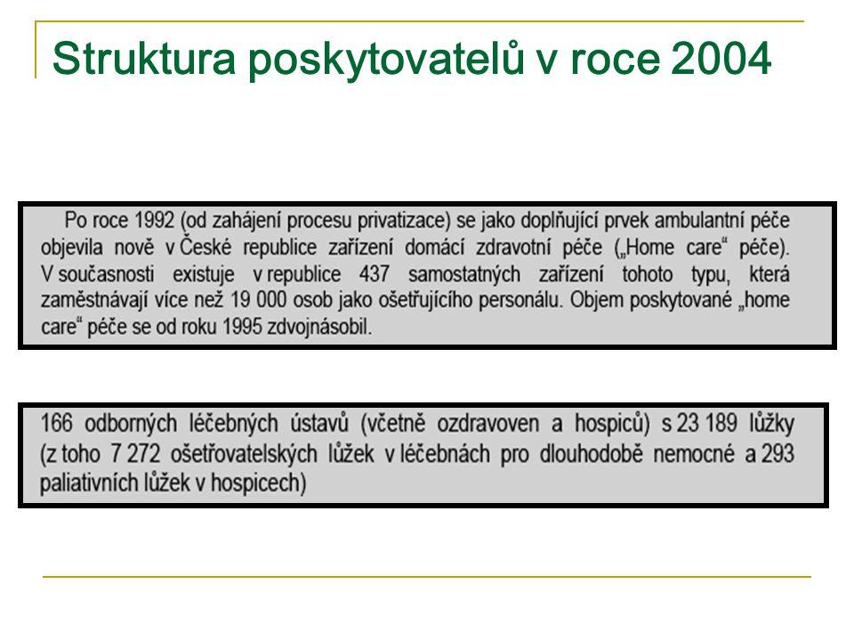 Struktura poskytovatelů v roce 2004