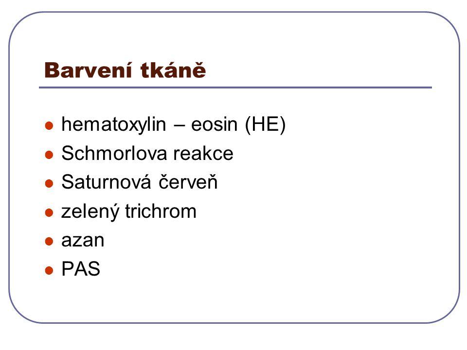 Barvení tkáně hematoxylin – eosin (HE) Schmorlova reakce