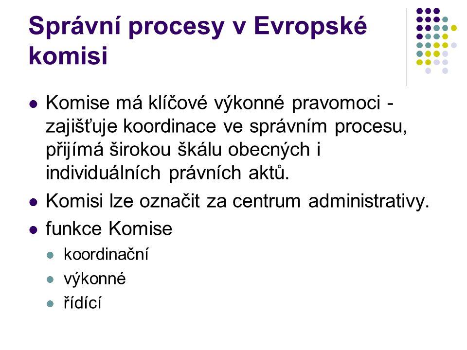 Správní procesy v Evropské komisi