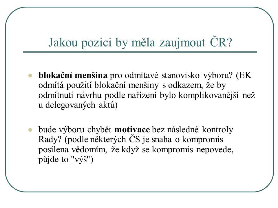 Jakou pozici by měla zaujmout ČR