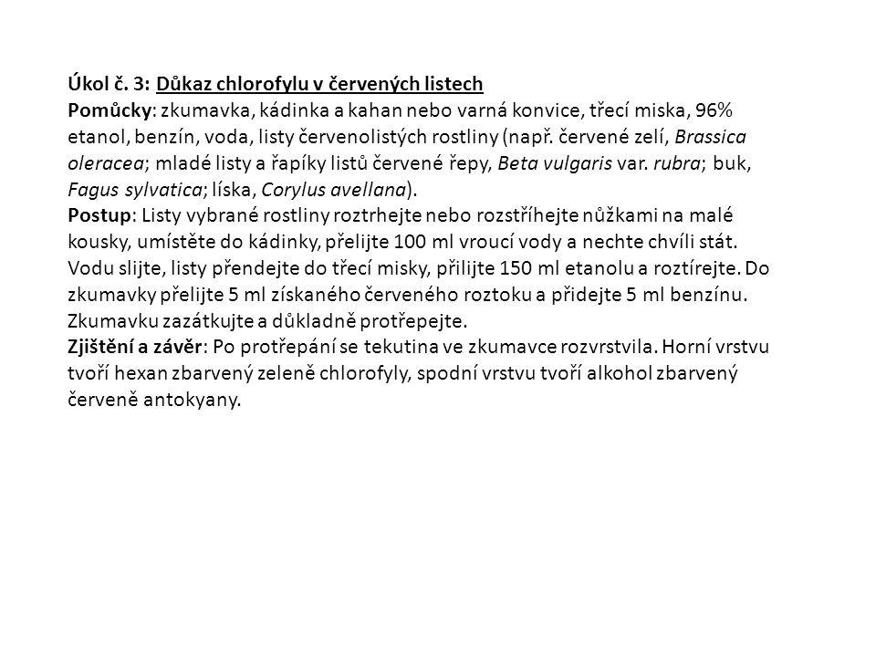 Úkol č. 3: Důkaz chlorofylu v červených listech