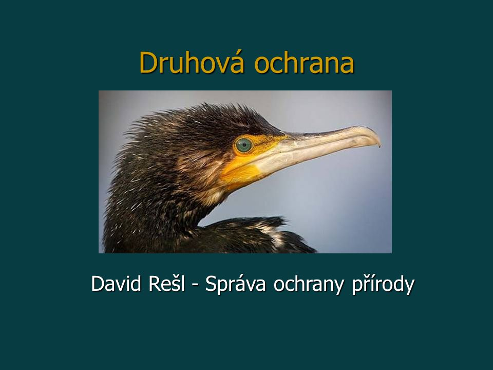 David Rešl - Správa ochrany přírody