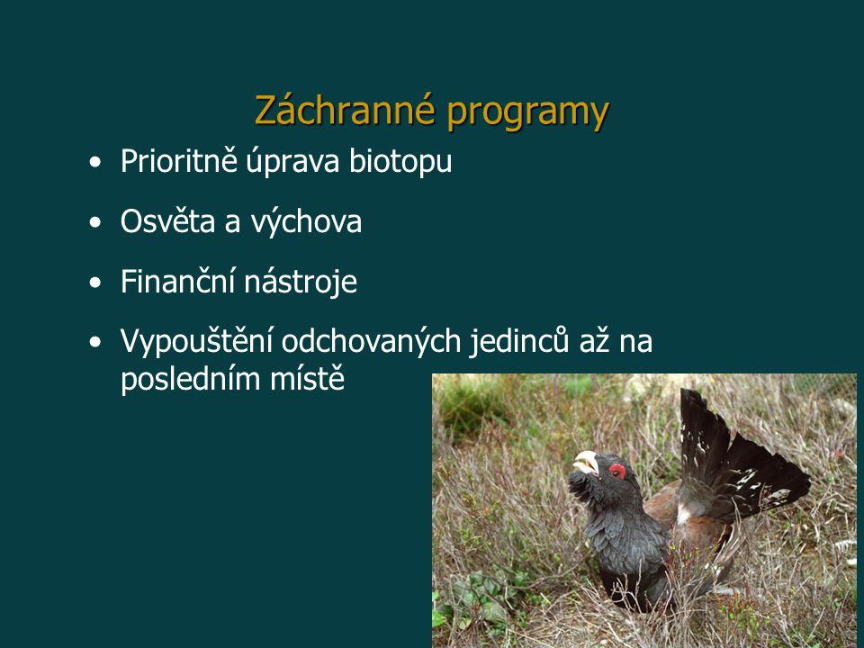 Záchranné programy Prioritně úprava biotopu Osvěta a výchova