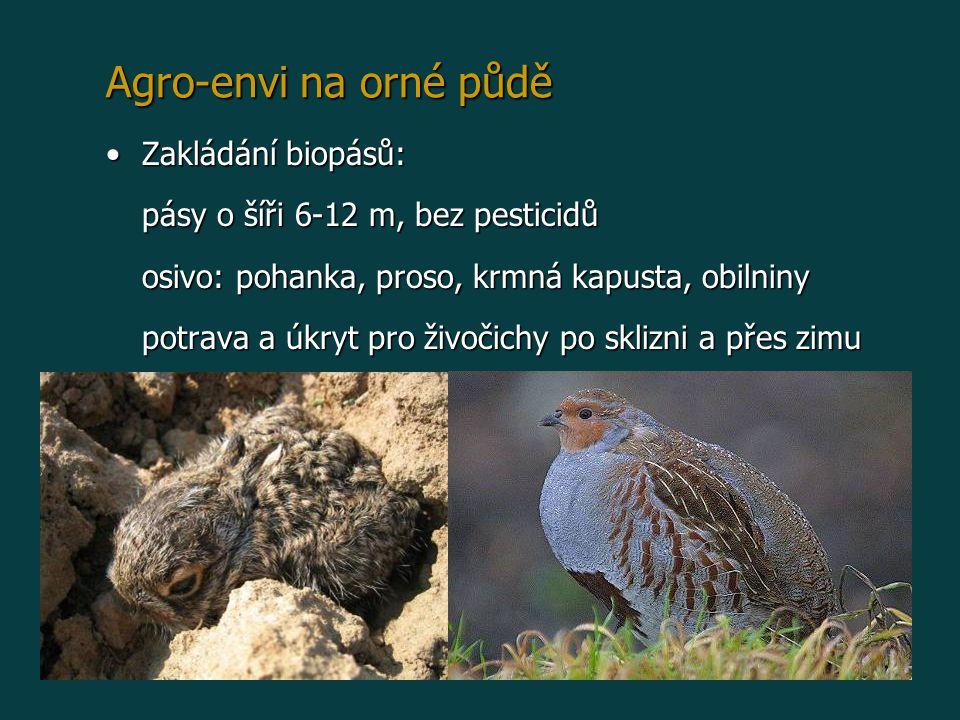 Agro-envi na orné půdě Zakládání biopásů: