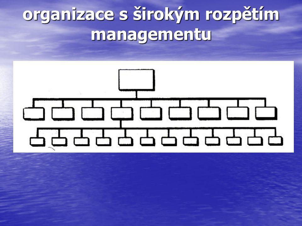 organizace s širokým rozpětím managementu