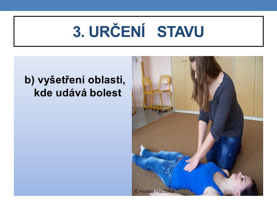 b) vyšetření oblasti, kde udává bolest