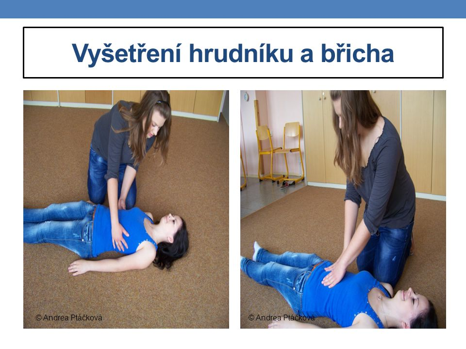 Vyšetření hrudníku a břicha