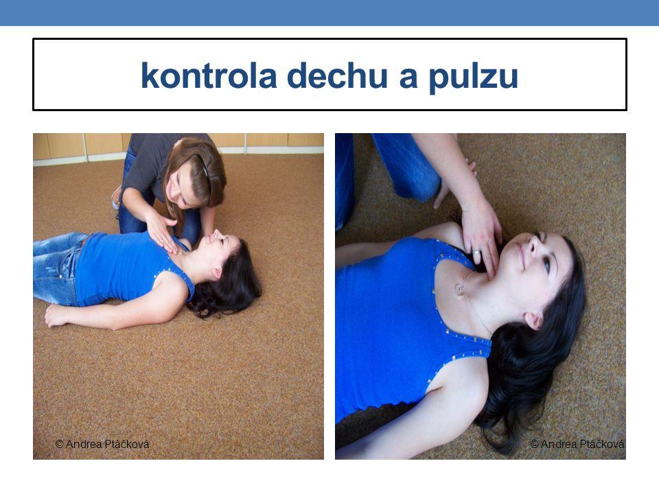 kontrola dechu a pulzu © Andrea Ptáčková © Andrea Ptáčková