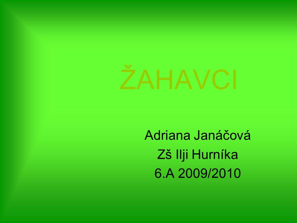 Adriana Janáčová Zš Ilji Hurníka 6.A 2009/2010