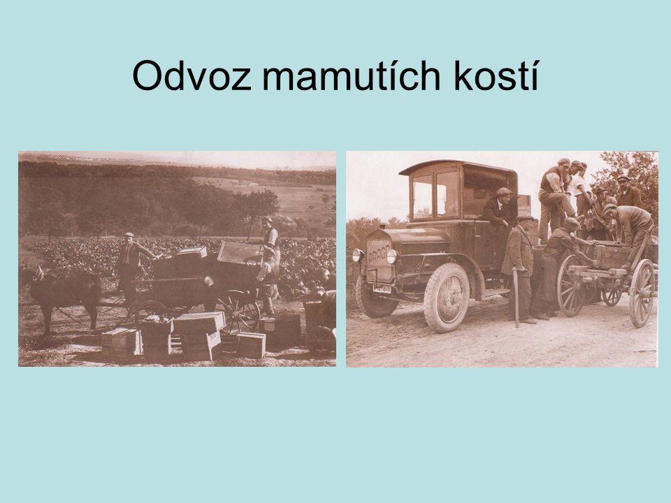 Odvoz mamutích kostí