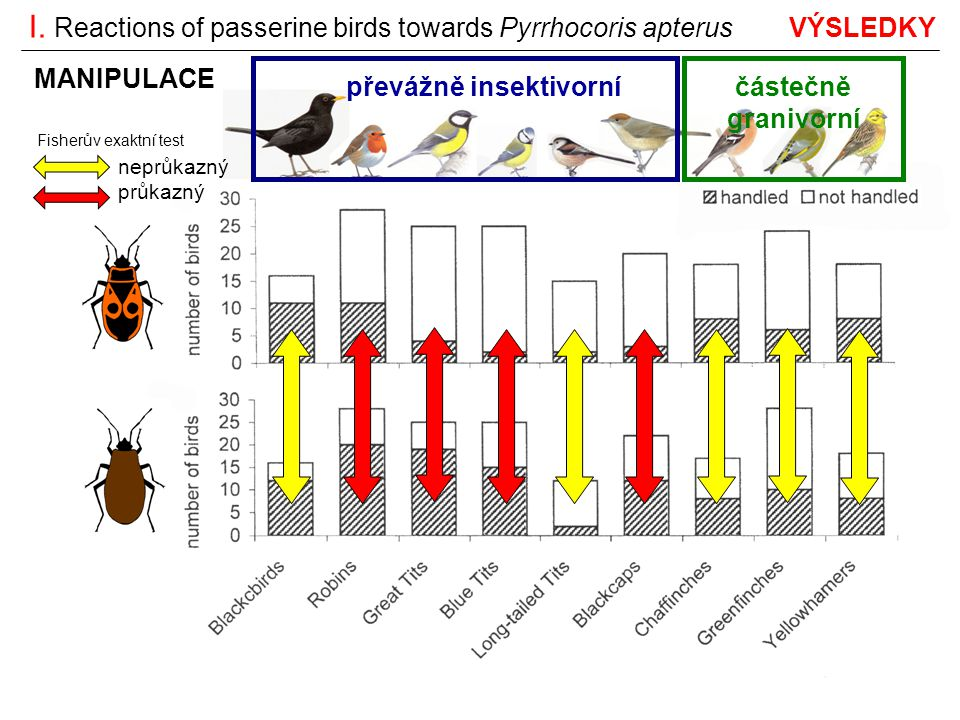 I. Reactions of passerine birds towards Pyrrhocoris apterus VÝSLEDKY